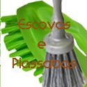 Escovas e Piassabas