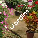 Jardim e exterior